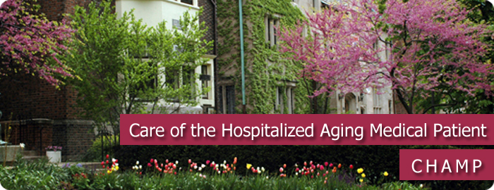 curriculum for the hospitalized aging medical patient  champ